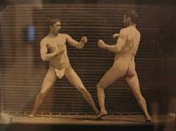 boxingStill2
